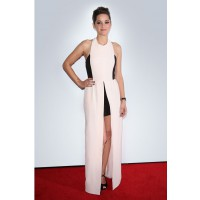 Marion Cotillard in Christian Dior at the 2012 Cannes Film Festival. en.vogue.fr