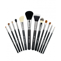 An essentials brush kit can be an economical way to start if you don't already have high quality makeup brushes. Image source: http://www.sigmabeauty.com/Complete_Kit_p/ck001.html