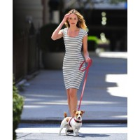 Candice Swanepoel in stripes with a puppy source: style bistro credit: Fame Fly Net http://www.stylebistro.com/Celebrity+Style/articles/K-aPu6XuUxe/Candice+Swanepoel+Poses+Puppy+Cuteness+Ensues