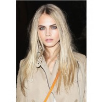 Cara Delevigne's eyebrows. https://www.jets.com.au/jetstream/news/the-jets-beauty-trend-edit-2013.html