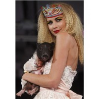 A model carrying a startled baby pig at Betsey Johnson's show. Source: AP Photo by Jason DeCrow