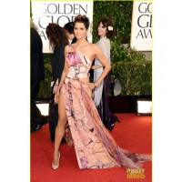 Halle Berry at the Golden Globes. Image source http://www.justjared.com/photo-gallery/2790931/halle-berry-golden-globes-2013-red-carpet-03/