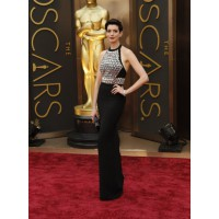 Anne Hathaway in Gucci. Source: The Oscars/ABC. http://oscar.go.com/red-carpet/photos/2014-oscars-trends-of-the-night/media/anne-hathaway-gucci