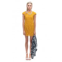 Shilla Creatures Lace Mini Dress in Amber, $129.95. http://www.shilla.com.au/new-arrivals/dresses/creatures-lace-mini-dress