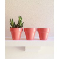 Redwood Stoneworks Set of Mini Planters via Etsy; from $13 https://www.etsy.com/au/listing/182077563/coral-pink-planters-set-of-mini-planter?ref=sr_gallery_32&ga_search_query=succulent+planter&ga_order=most_relevant&ga_ref=auto1&ga_ship_to=AU&ga_page=2&ga