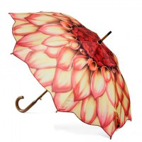 Galleria Dahlia Umbrella, Peter's of Kensington, $34 http://www.petersofkensington.com.au/Public/Galleria-Dahlia-Umbrella.aspx